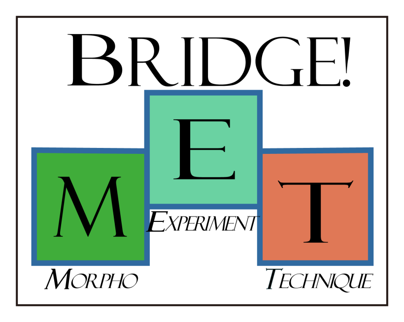 Bridge_MET-02